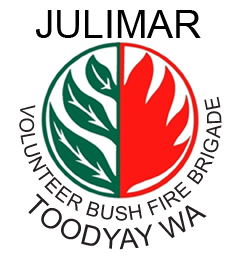 Bush Fire Logo